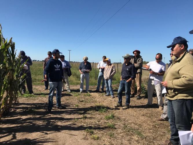 Se desarrolló una Jornada sobre cultivos de gruesa en Coronel Suárez
